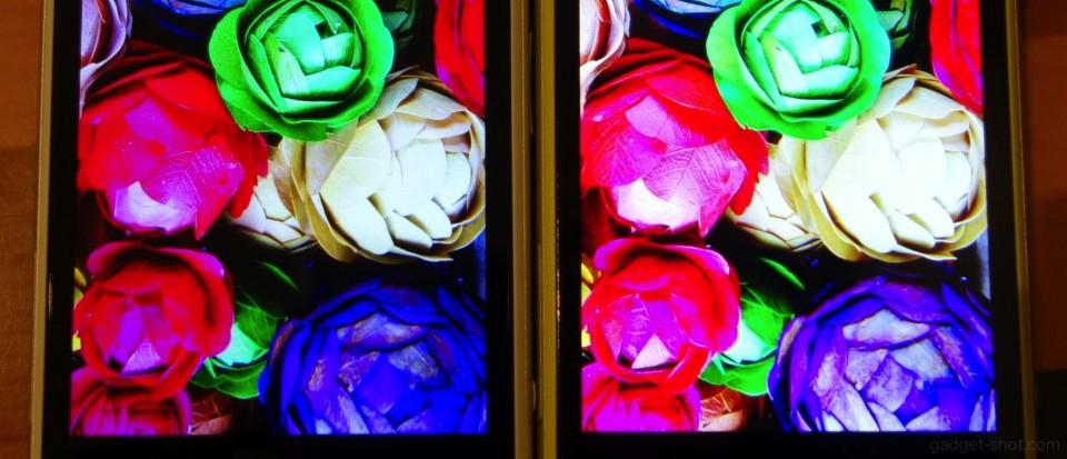 z1f-display-1