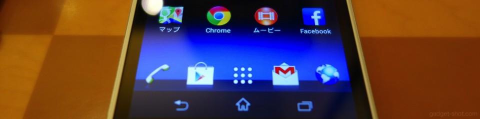 z1f-display-4