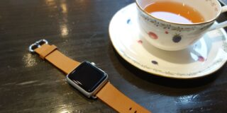 apple watch sport leather belt 10