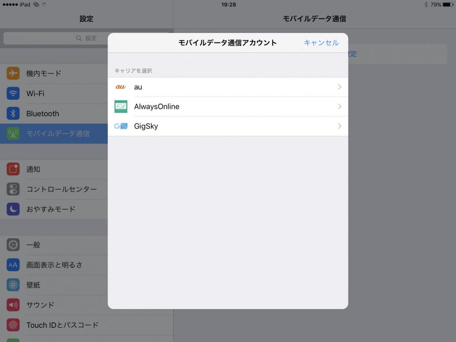 ipad pro apple sim